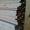 Доска строганная сухая #1171896