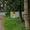 п.Отрадное (город-курорт Светлогорск),  снт Радуга,  6 соток,  в собственности,  св #1710226