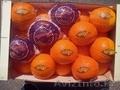 Апельсины,  мандарины,  лимон,  хурма оптом в Испании