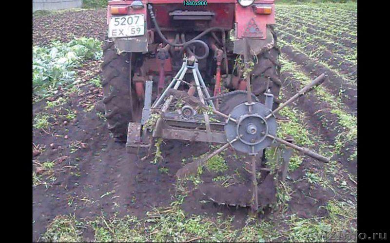 Картофель копалка своими руками для трактора 80