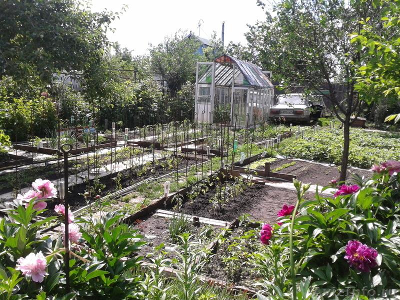 Сад Дешево