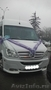 Заказать автобус на свадьбу экскурсию ВАХТА Краснодар