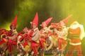 Работа для танцоров в Анталии