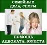 Семейные споры,  услуги опытного юриста