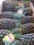 Оптом ананасы