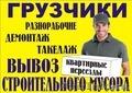 Грузчики СПБ и области